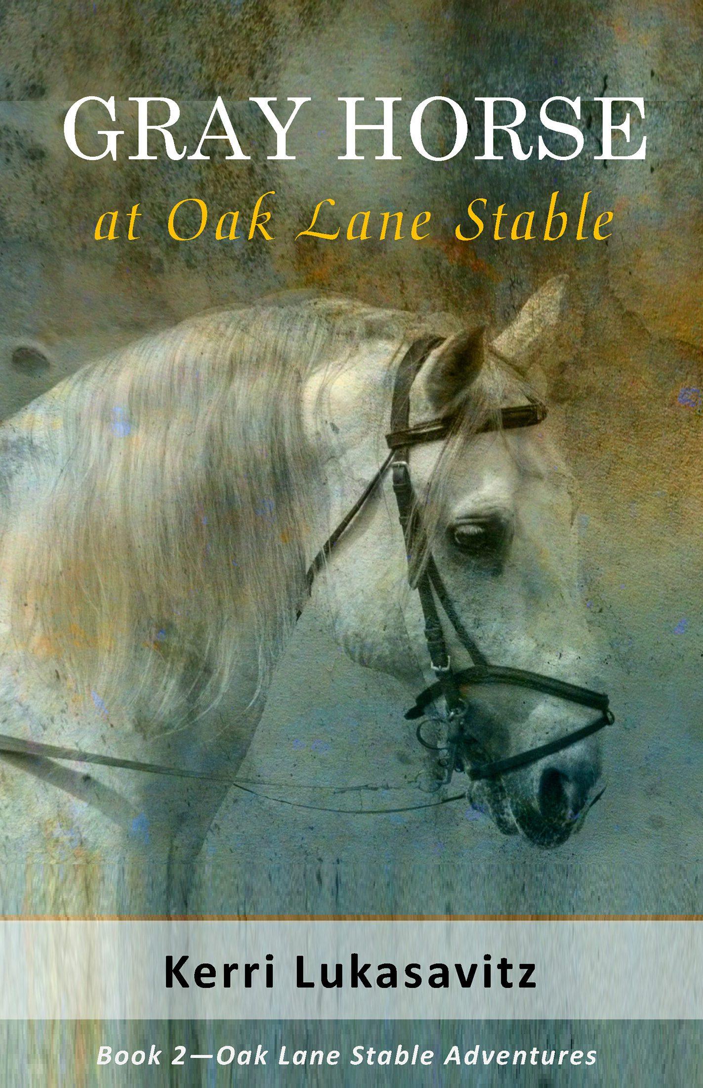 Gray Horse at Oak Lane Stables